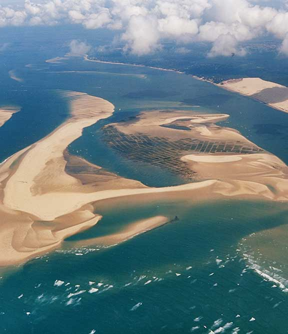 La Réserve Naturelle Nationale du Banc d'Arguin englobe l'ensemble des îlots sableux qui se forment à l'entrée du Bassin d'Arcachon, entre la pointe du Cap Ferret et le continent