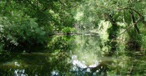 Réserve naturelle des marais de Bruges