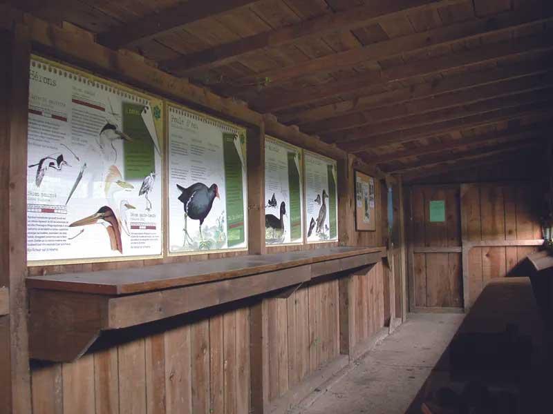 Observatoire des marais de Bruges